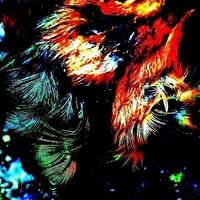 Thumb_sq200_45_-_plumage__s_